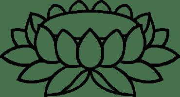500px-Lotus-Padma_12b.svg